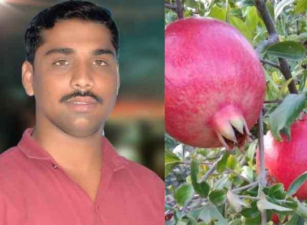 Agriculture Success Story of farmer Swapnil Shivaji Mali