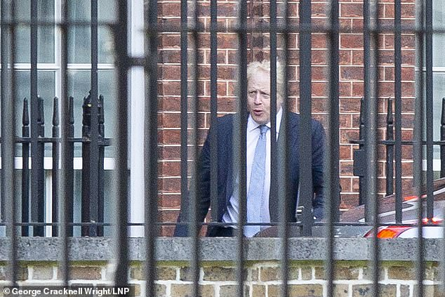 The Tory peer praised the No Deal preparations that have started under the leadership of Boris Johnson (pictured today in Downing Street)
