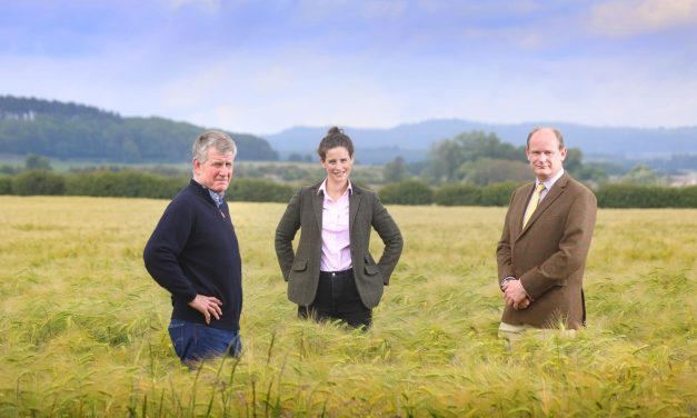 Northumberland farming firm makes seven figure land acquisition