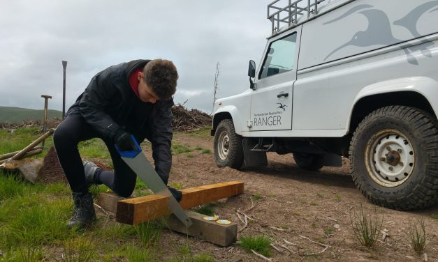 Northumberland National Park recruiting next generation of rural talent