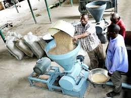 Rice processing business plan in Nigeria