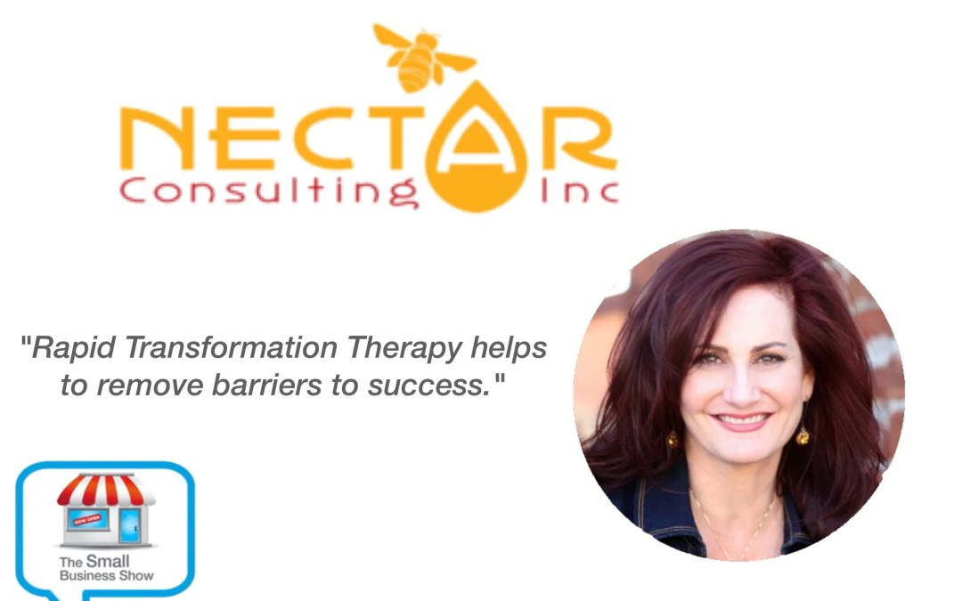 Michele Molitor – Founder of Nectar Consulting – Small Business Show Episode 287