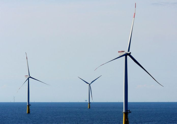 © Reuters. FILE PHOTO:  A general view of the DanTysk wind farm, 90 kilometres west of Esbjerg