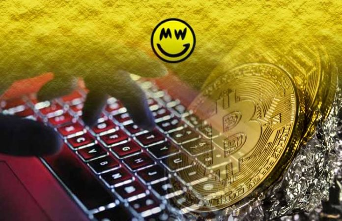 Cryptocurrency-Grin-Receives-300000-Bitcoin-As-A-Mysterious-Donation