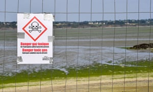 A sign warns of toxic seaweed in the Vallais beach, covered with toxic green algae, in Saint-Brieuc, northwestern France, on 10 July 2019.