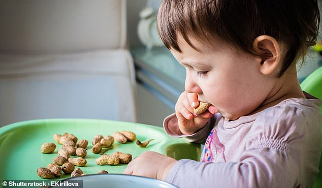 A diet with peanuts and eggs can prevent food allergies in high-risk babies, scientists say.Those introduced to the foods at three months old had a lower chance of getting an allergy than babies introduced at six months (stock)