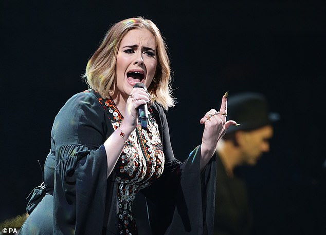 Sound profits: Fraser T Smith was entitled to royalties from 2011¿s Set Fire To The Rain by Adele (pictured), as well as Sam Smith¿s 2014 album In The Lonely Hour