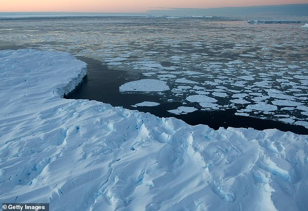 A new study led by Columbia University in New York has found that rising global temperatures from climate change could lead to an additional 2,100 deaths per year, mostly among young men (file image)