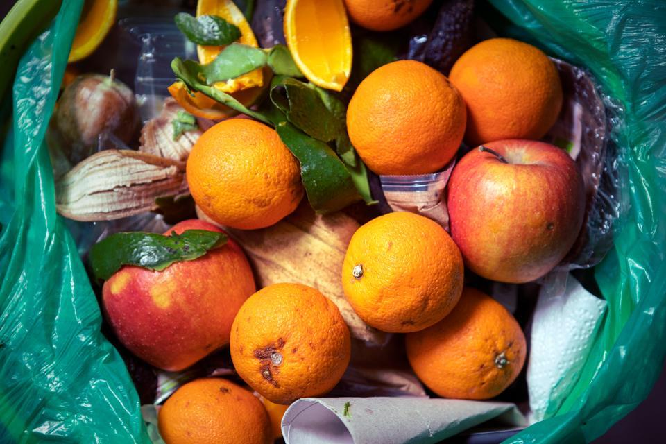 Food waste female founders