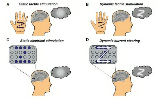 This figure illustrates how dynamic stimulation to the visual cortex enables participants to 'see' shapes (Credits: Beauchamp et al./Cell / SWNS.COM)