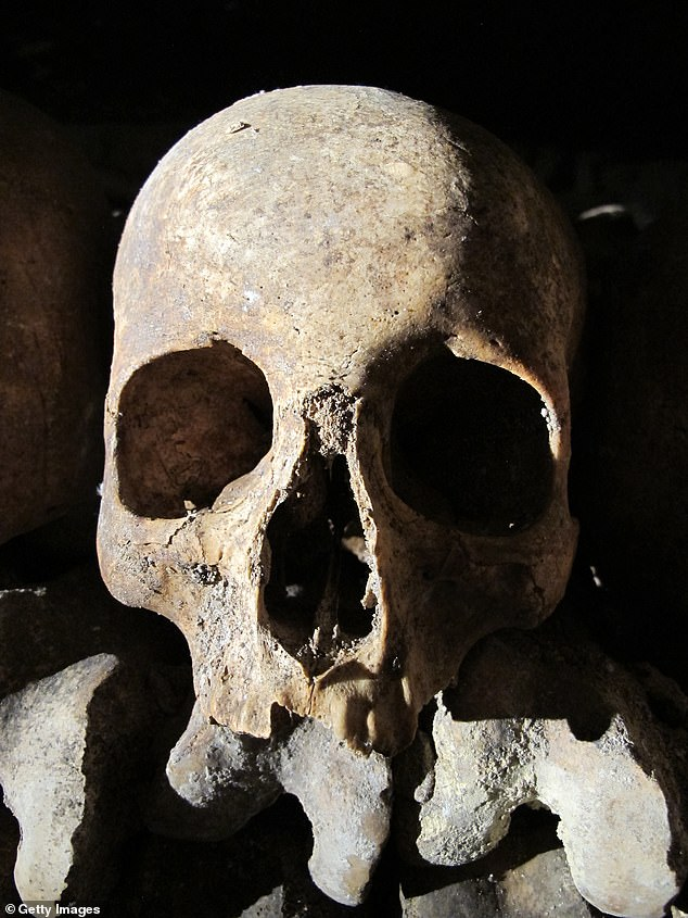 Facebook users have formed private groups to sell and solicit human remains, including skulls, fetal remains, and a mummified six-year-old child dating to the 1700s