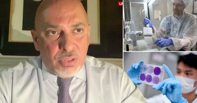 Composite image of business minister Nadhim Zahawi and scientists working on Covid drugs