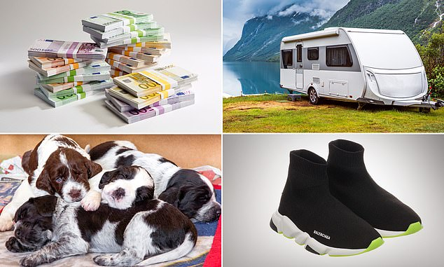 Banks have reported a big rise in scam cases involving people trying to purchase foreign currency, caravans, puppies and designer trainers