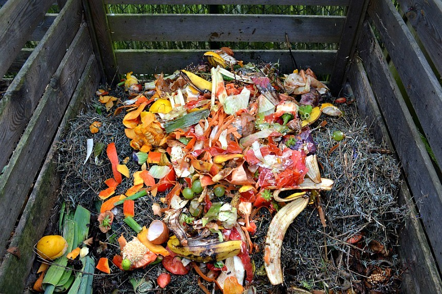 How to Dispose of Garden Waste in an Environmental Friendly Way?