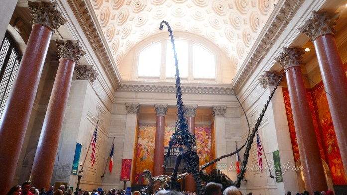 New York - Natural History Museum