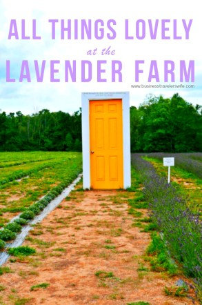 All Things Lovely at the Terre Bleu Lavender Farm