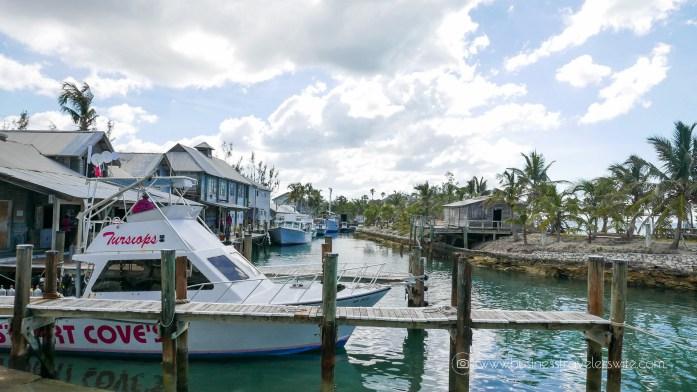 Amazing Snorkeling Tour with Stuart Cove's Dive Bahamas Dive Shop Check-in