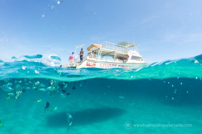 Amazing Snorkeling Tour with Stuart Cove's Dive Bahamas Hollywood Bowl Tropical Fish Boat