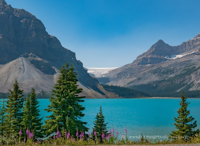 Scenic Summer Roadtrip to the Canadian Rockies Bow Lake (1 of 1)-2