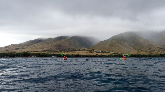 Kayak and Snorkel Tour in Maui, Hawaii with Maui Kayak Adventures