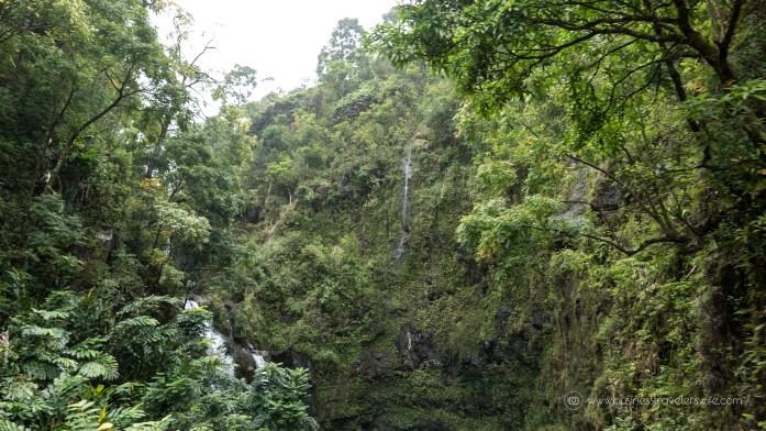 10 Memorable Stops in Road to Hana for A Self-Drive Tour Maui, Hawaii 3 Bear Falls or Upper Waikani Falls