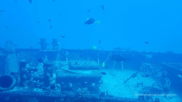 Crossing Off the Bucketlist- Ride a Submarine and Explore the Deep Sea Atlantis Submarines Anchor Underwater Adventure Sunken Ship-2