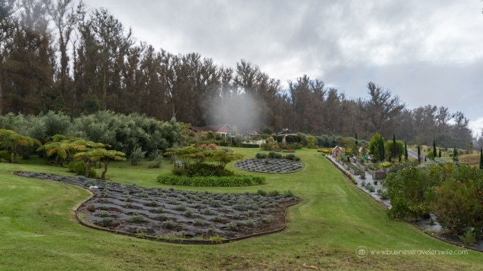 Visiting Haleakala Crater, Iao Valley and Other Interesting Stops in Maui Valley Isle Excursions Tour Lunch Picnic at the Lavender Cafe & Farm Garden