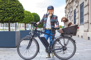 electrically powered bicycle