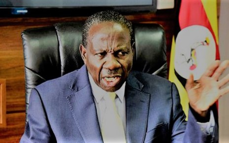 Govt sets aside 100bn for the purchase of maize by private sector