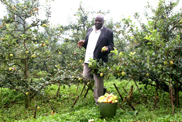 Agriculture can provide jobs to Uganda's unemployed youth if well harnessed, according to the twelfth Uganda Economic Update published today by the World Bank.