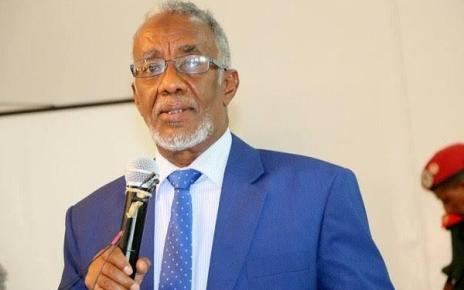 Somaliland Foreign affairs and international cooperation minister Yasin Mohammed Hiir has said his country is interested in opening its doors on foreign investors