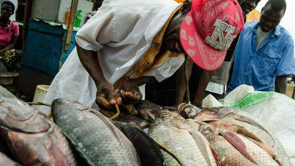 Fish exporters have asked Uganda's Parliament not to try and reverse a decision of having continued presence of Uganda Peoples' Defense Forces (UPDF) on lakes in their bid to stop illegal fishing.