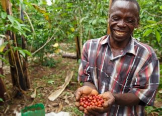 Coffee was also maintained among the 12 priority commodities in the Agriculture Sector Strategic Plan and the National Development Plan