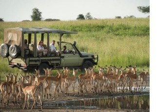 Tanzania's President John Pombe Magufuli has directed wildlife conservation authorities in his country to split Selous Game Reserve and have its upper part turned into a national park.