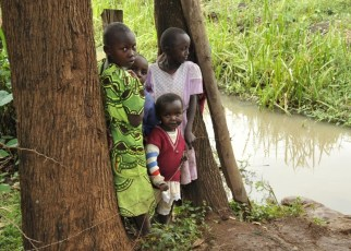 Merck, a science and technology company, has announced that, as part of its integrated Schistosomiasis Elimination Program, it is intensifying the Research & Development efforts for developing and providing access to transformative and sustainable health solutions to fight schistosomiasis also known as Bilharzia.