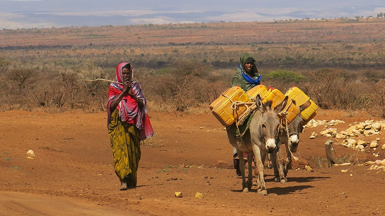 Around 425,000 people are estimated to be living in internal displacement in Ethiopia as a result of drought. Children and youth make up half of this figure.