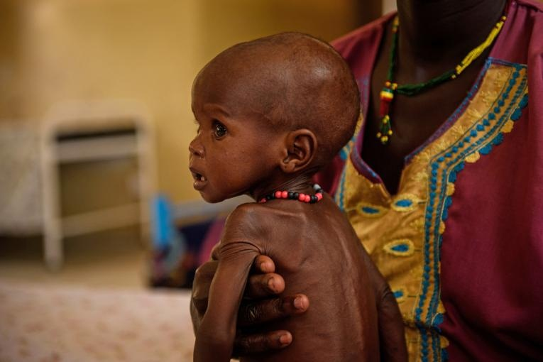 African countries have made progress toward eradicating malnutrition and stunting but need to do more to hit United Nations malnutrition targets by 2025. This was the main message of a meeting that took place during the 33rd African Union Summit.