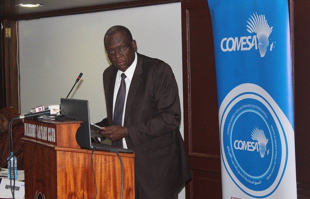 The total installed power generation capacity in the COMESA region is 92,00 megawatts (MW) with Thermal power dominating at more than 69% and Hydro (large and small) accounting for 30%.