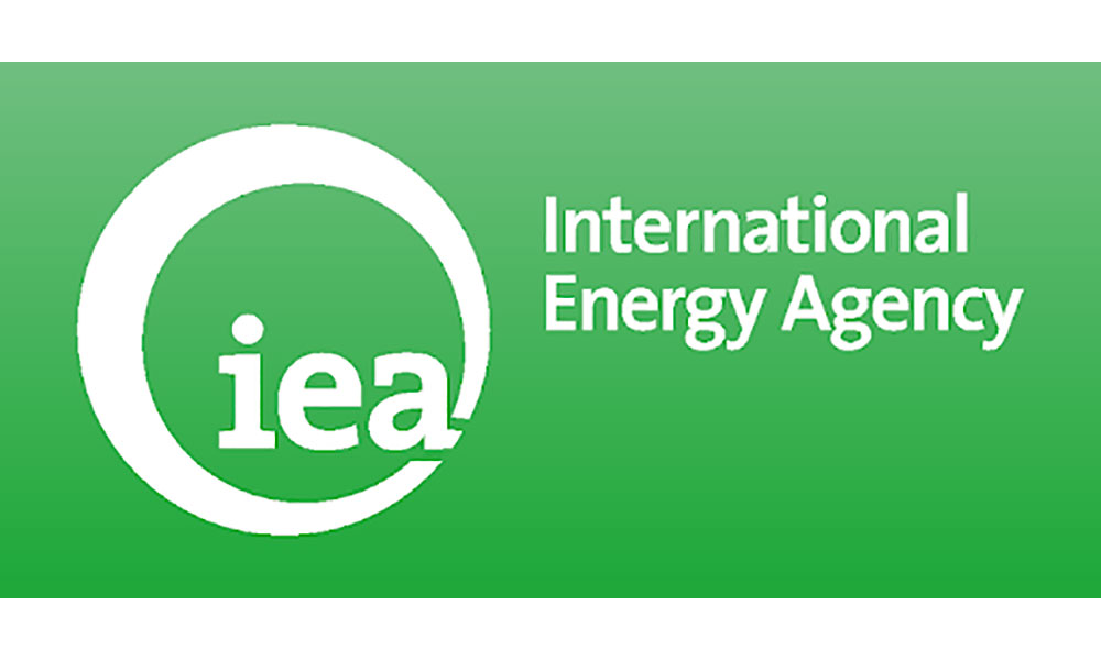 International Energy Agency's Africa Dialogue Needs to be Inclusive for a Workable Africa's Energy Transition
