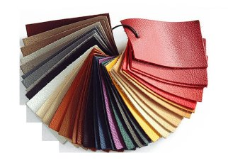 South-South Leather Industry Exchange (SSE) Call for a Coordinated Policy