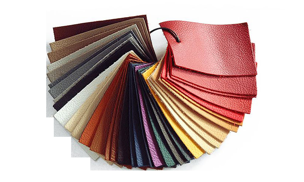 South-South Leather Industry Exchange(SSE) Call for a Coordinated Policy