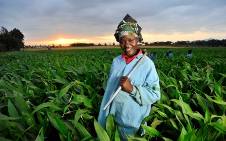 Why Agribusiness Investment is Most Exciting for Africa.