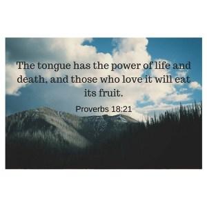 Proverbs 18-21