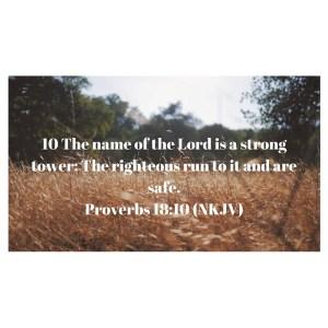 Proverbs 18_10