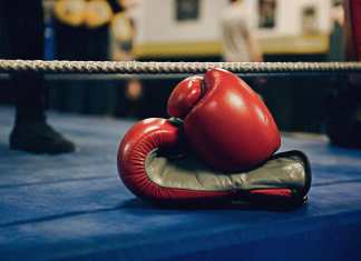 boxing-gloves-image-busybuddiesng