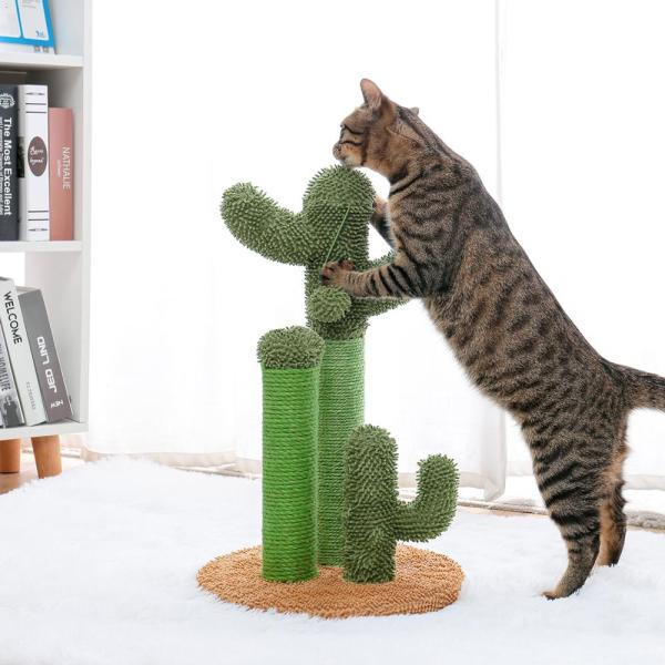 Cactus Cat Scratching Post with Brown Cat Model on Yellow Base Medium