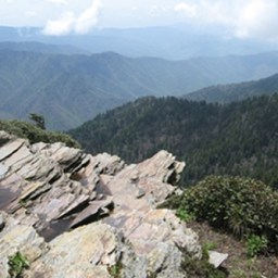 Mount LeConte Hike by Alum Cave