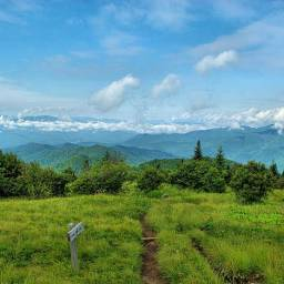 Andrews Bald Hike, Great Smoky Mountains