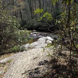 Turkey Pen – Bradley Creek – Poundingmill Loop Hike