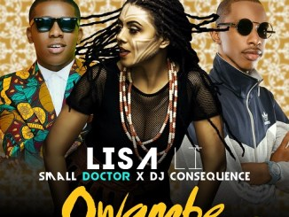 Lisa Li - Owambe ft Small Doctor & DJ Consequence (prod. by Zippy)